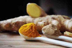 Veja alimentos que fortalecem o sistema imunológico
