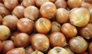 Acompanhando a alta da cebola, hortaliças ficam mais caras no Pará