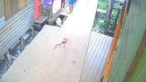 Criança de 5 anos é assassinada com tiro na cabeça em Santana