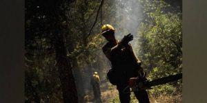 Campanha de conscientização contra queimadas é aprovada pela Câmara